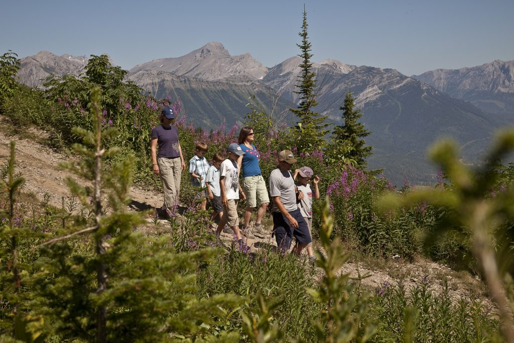 Group of people on side of mountain in Fernie.